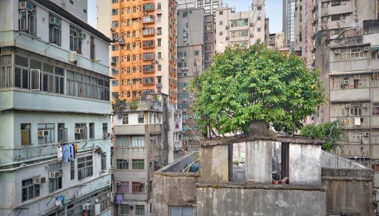 """ФОТО, ВИДЕО. Небоскреб небоскребу рознь, или """"Бетонные джунгли"""" Гонконга с высоты птичьего полета"""