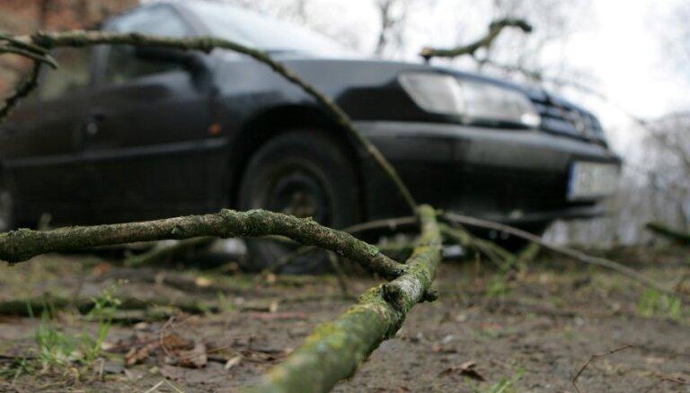 В Лиепае ветром сорвало крышу дома и повалило деревья