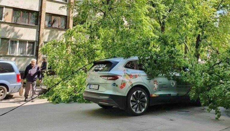 ФОТО: В Риге на официальный автомобиль чемпионата мира упало дерево