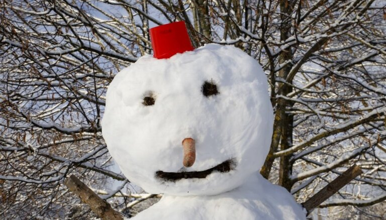 Janvāra pēdējās dienas būs sniegotas, februāris nāks ar atkusni