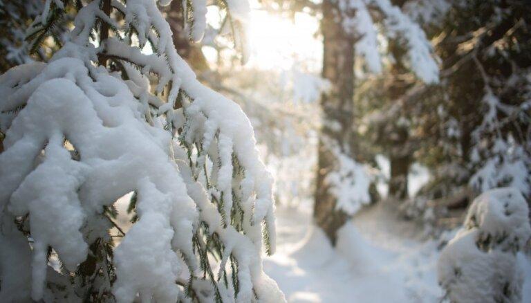 Lielākais sals un dziļākais sniegs gaidāms ziemas otrajā pusē