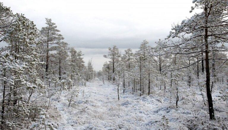 Ночь на пятницу будет морозной, днем ожидается снег и дождь