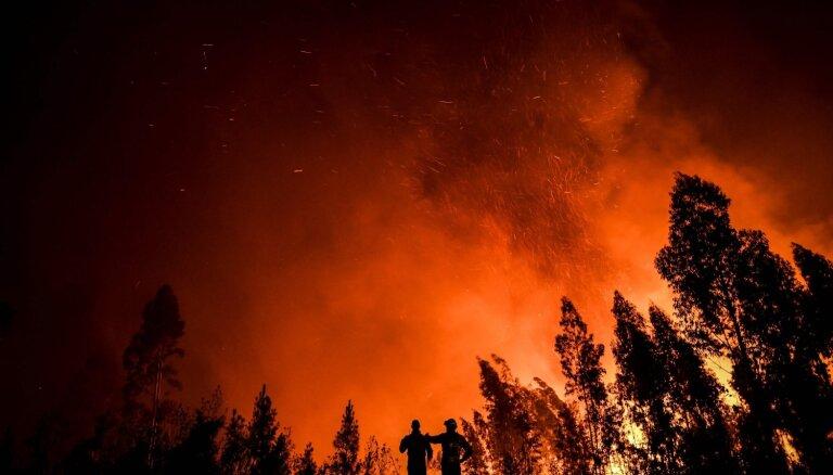 Foto: Portugāles vidienē plosās plaši meža ugunsgrēki