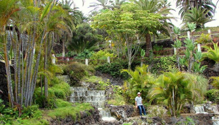 Ceļojuma stāsts: Tenerife jeb skaļi izteiktie sapņi piepildās