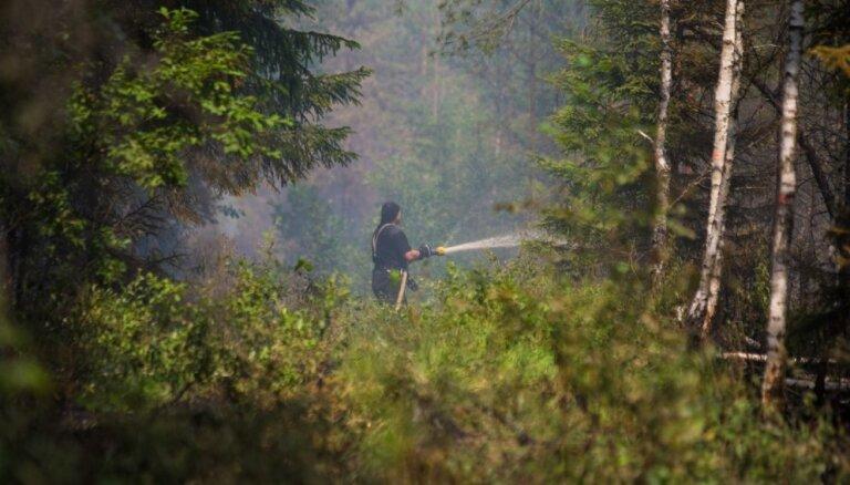 Sausā laika un vēja dēļ prognozes par Valdgales pagasta ugunsgrēka ierobežošanu nav pozitīvas