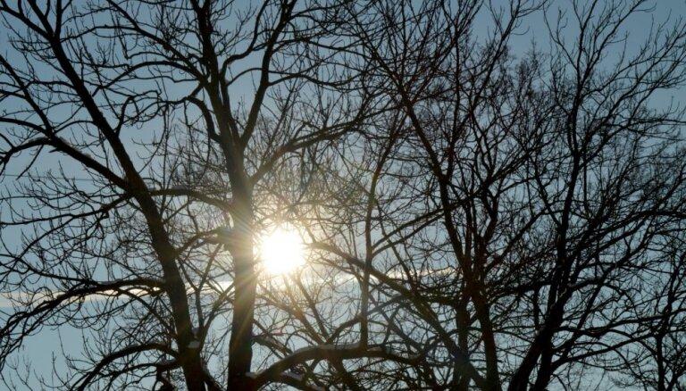Sestdien sinoptiķi gaida jaunus siltuma rekordus