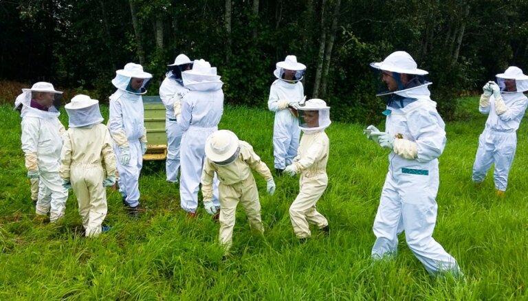 Пчелы, Гайзинькалнс и деревенская идиллия: почему Сандрис вернулся в родное Видземе