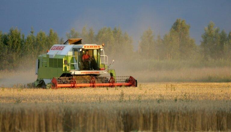 Lietus kavē graudaugu ražas novākšanu; var ciest arī kvalitāte