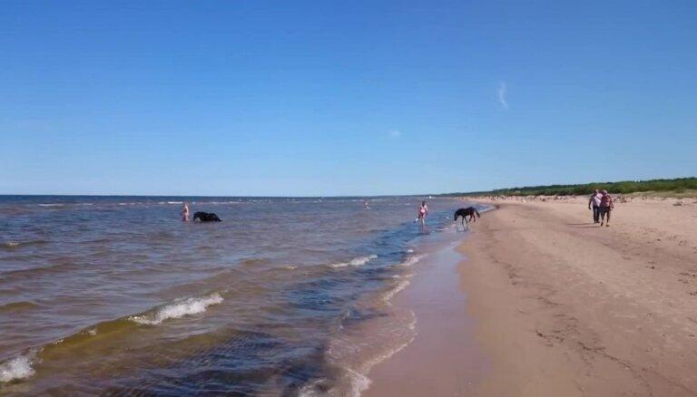 Vecāķu pludmalē peldina zirgus