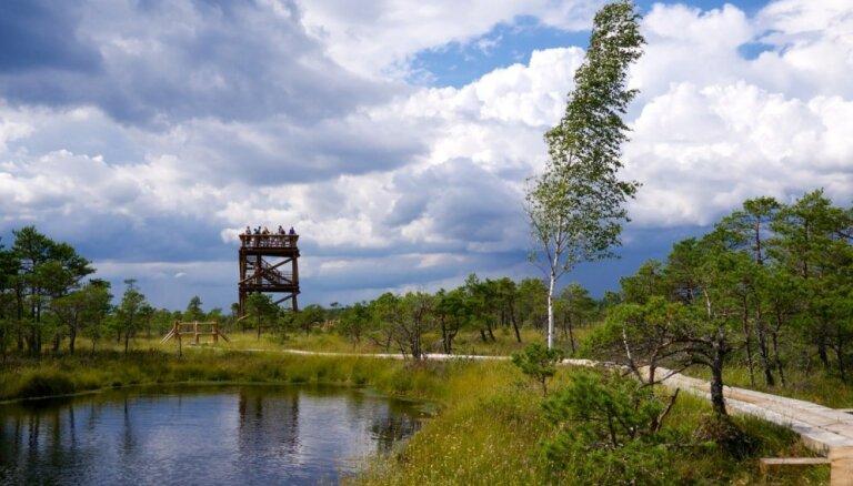 На волю, в леса и на болота! Три идеи для весенних прогулок в 50 километрах от Риги