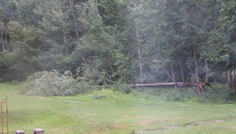 Спасатели получили 39 вызовов на ликвидацию вызванных сильным ветром разрушений