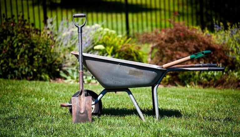 Pavasara darbiem gatavs: padomi darbarīku uzglabāšanā un kopšanā