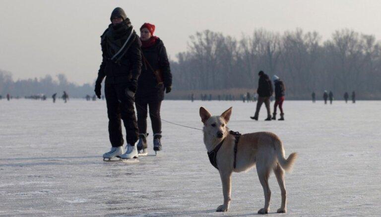 Aizsalusi Donava: ļaudis steidz izslidoties pa Eiropas otru garāko upi
