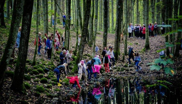 Zinību pilni meži: Pokaiņu gadatirgus fotomirkļos