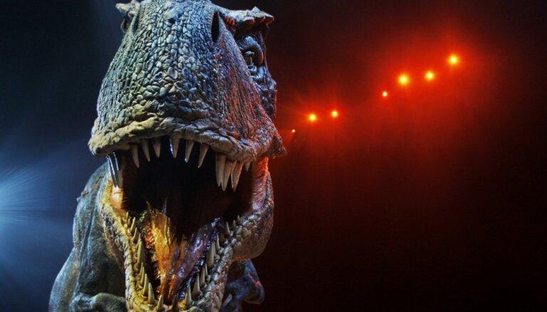 Немцы собирают скелет царя динозавров