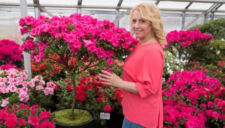 Olga Rajecka sveic pavasari īpaši jauneklīgā un apburošā tēlā