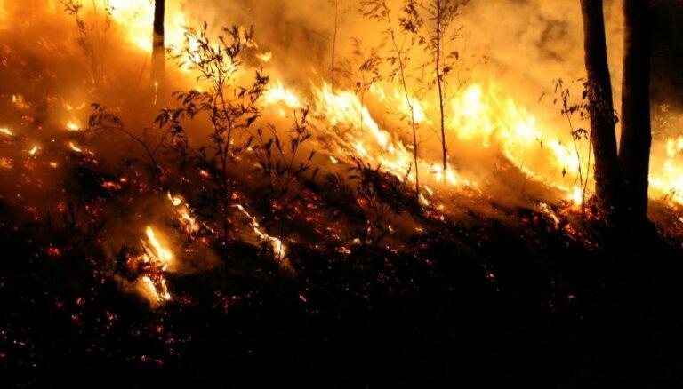Kandavā trešo dienu cīnās ar bīstamu meža ugunsgrēku; turpina eksplodēt lādiņi