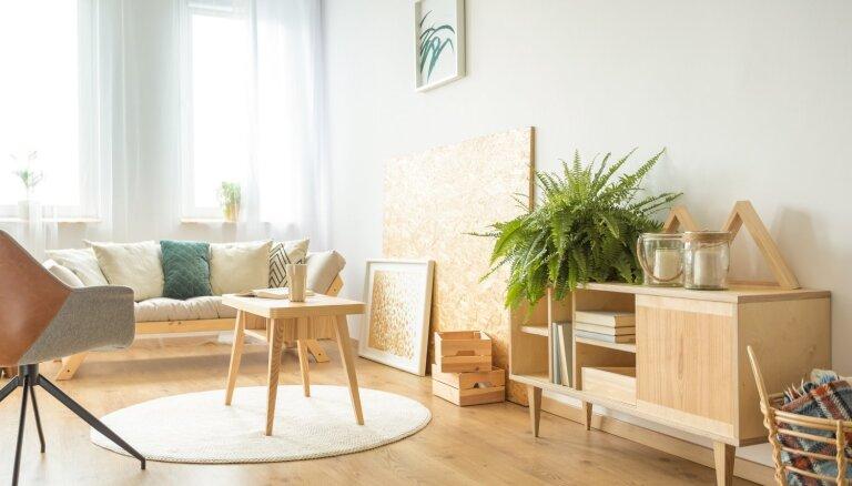 Interjera dizainere ieskicē dabai draudzīgu mājokļa iekārtojumu 'zero waste' principos
