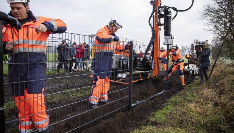 Foto: Dānija būvē žogu uz Vācijas robežas Āfrikas cūku mēra ierobežošanai