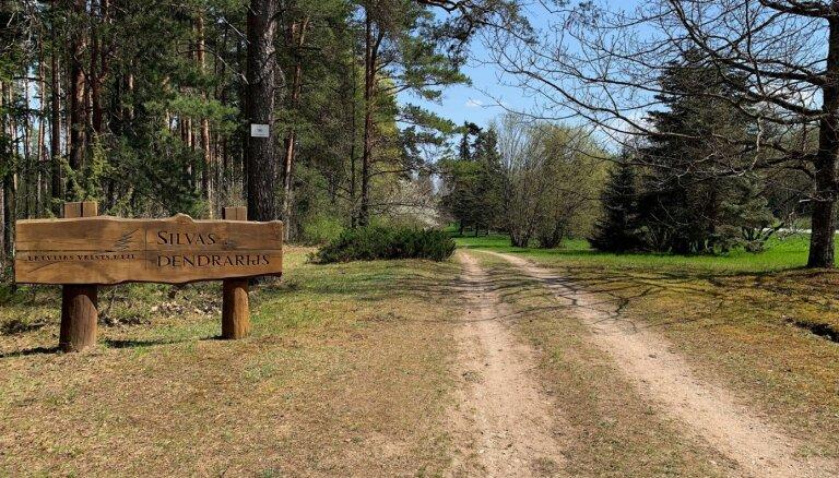Lieliska vieta nesteidzīgai pastaigai – Silvas dendroloģiskais parks