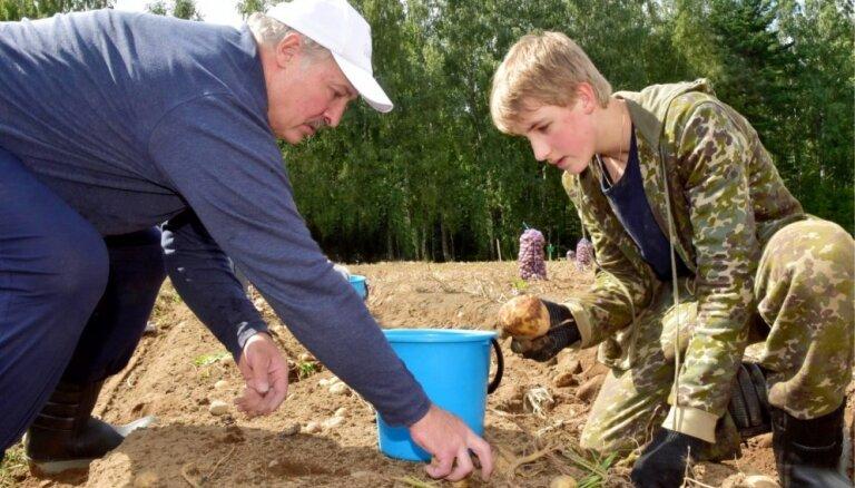 Сын Лукашенко стал самым известным в Китае белорусским тинейджером