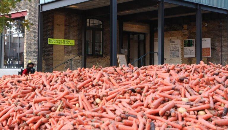 Londonā radīta mākslas instalācija no 32 tonnām burkānu