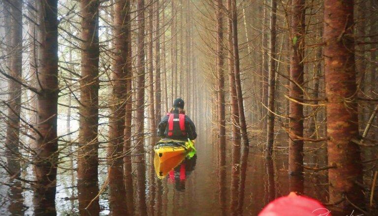 ФОТО. На лодках среди деревьев: в Соомааском парке Эстонии — пятое время года