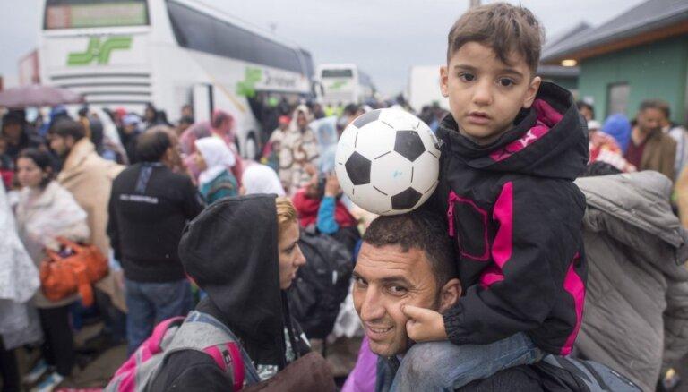 Мэр Кале пожаловалась на неуправляемость ситуации с мигрантами