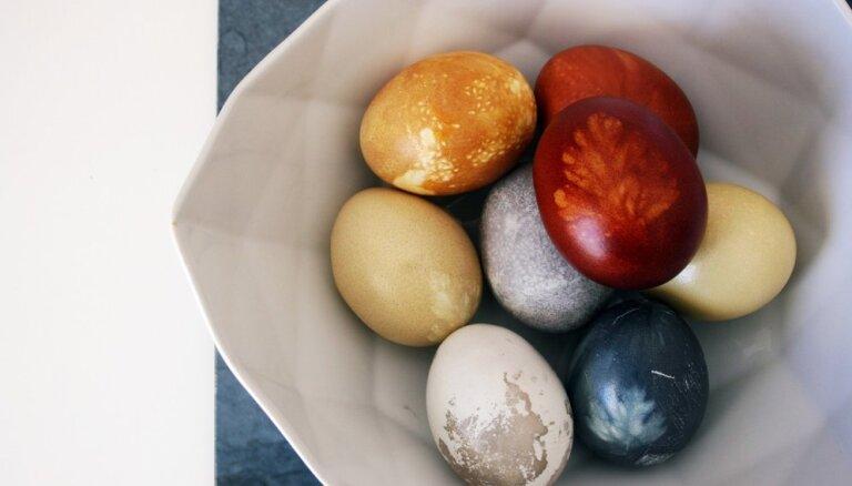 Разноцветный эксперимент: красим пасхальные яйца подручными красителями