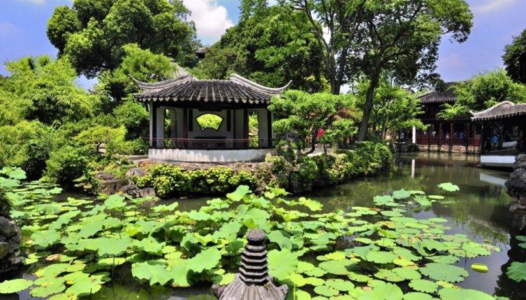 Lotosi, mandarīnpīles un bonsai kociņi – Neveiksmīgā politiķa dārzs Ķīnā