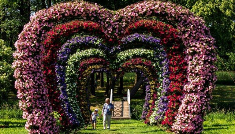 Foto: Iespaidīgais ziedu festivāls Pakrojas muižā
