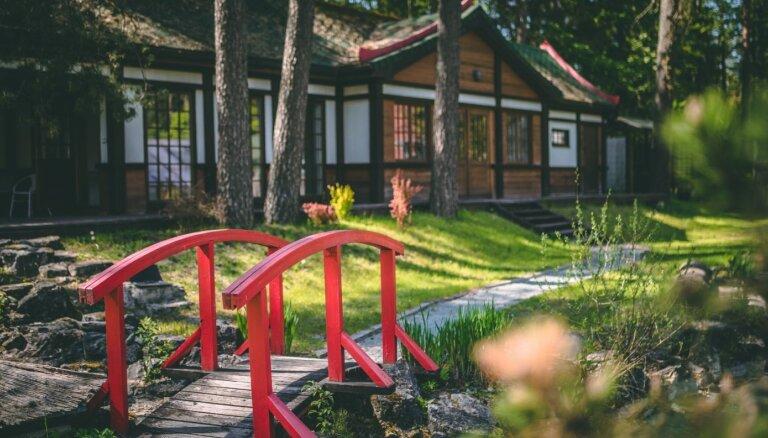 ФОТО: Отдохнуть в тишине – удивительный парк бонсай неподалеку от Инчукалнса