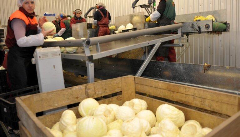 Sākts dārzeņu audzētāja 'Galiņi' likvidācijas process