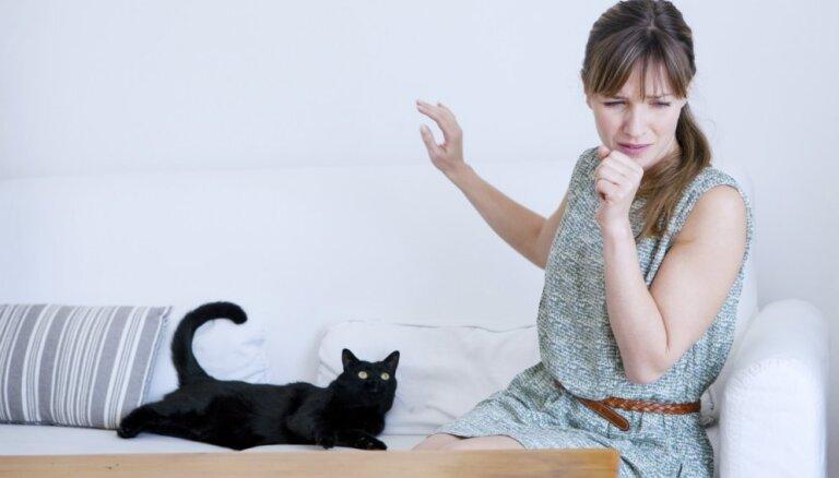 10 kaķu šķirnes, kas piemērotas alerģiskiem cilvēkiem