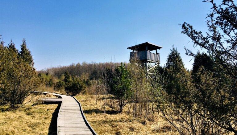 Foto: Neparastā Šaukļu dabas taka Lietuvā, kas īpaša ar tundrai līdzīgo ainavu