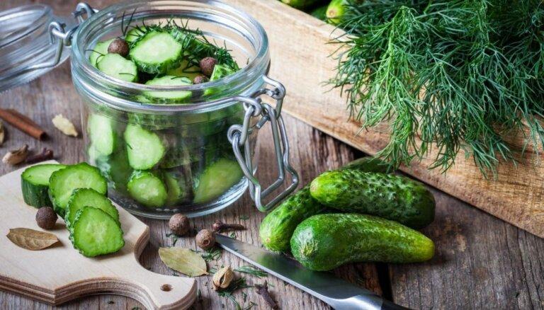 Ko iesākt ar gurķu ražu? 24 receptes ātrai apēšanai un ziemas krājumiem