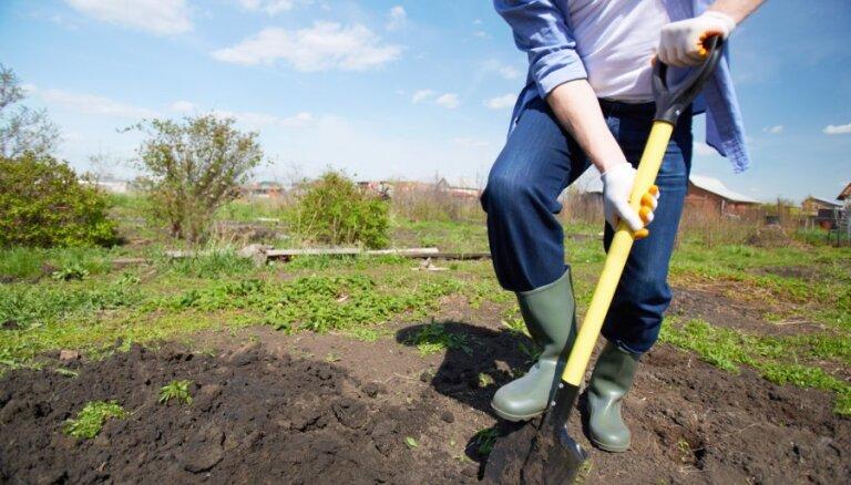 Минфин: Латвия пережила пик экономического роста; теперь он будет снижаться