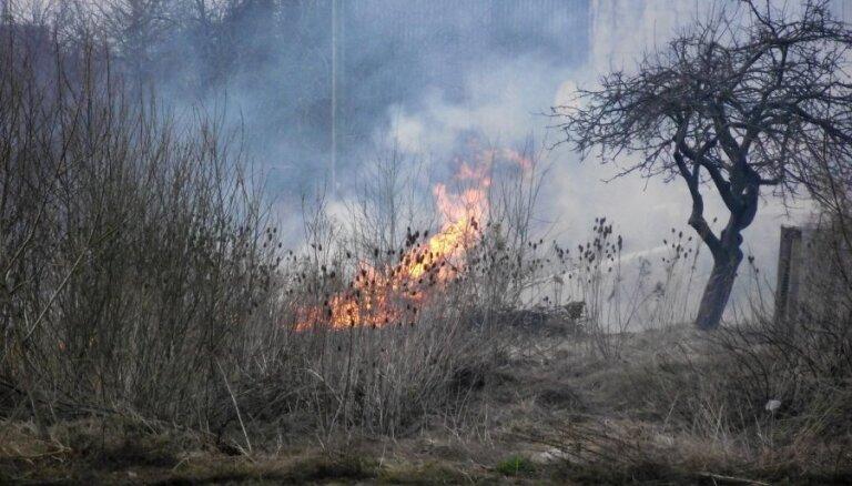Pirmdien ugunsdzēsēji cīnījušies ar 44 kūlas ugunsgrēkiem