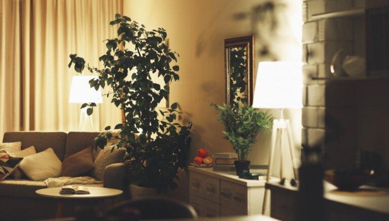 Interjera elementi, kas pēc dizaineru domām ir lieki un nevajadzīgi mājokļa iekārtošanā