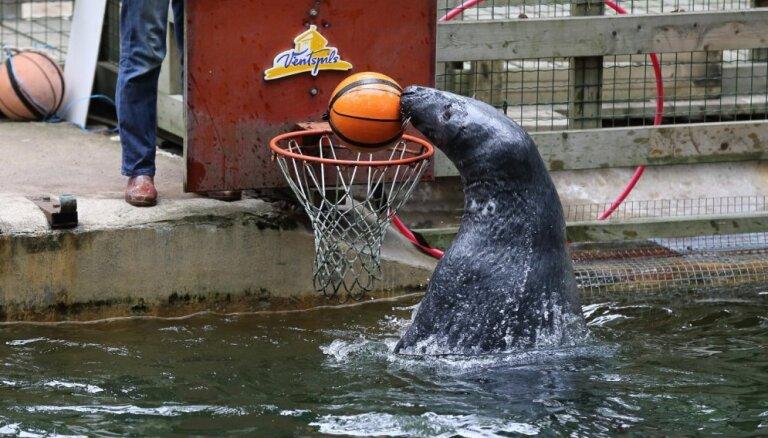 Rīgas zoodārzs aicina uz Dzīvnieku dienām