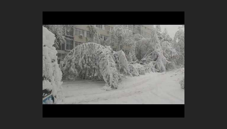 Video: Negaidīts sniegs paralizē Moldovu
