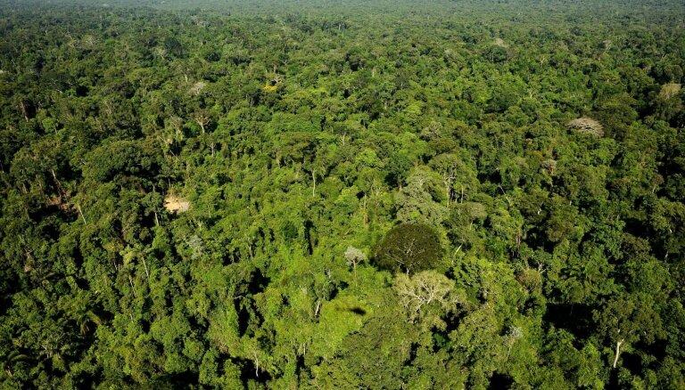 Bolsonaru dusmīgs uz norvēģiem par pārtrauktām investīcijām Amazones aizsardzībai