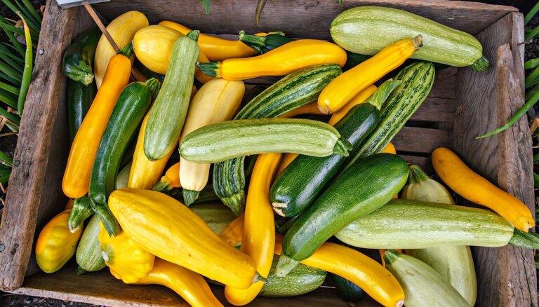 Veselīgais uztura bagātinātājs kabacis – kāpēc ēst un kā gardi pagatavot
