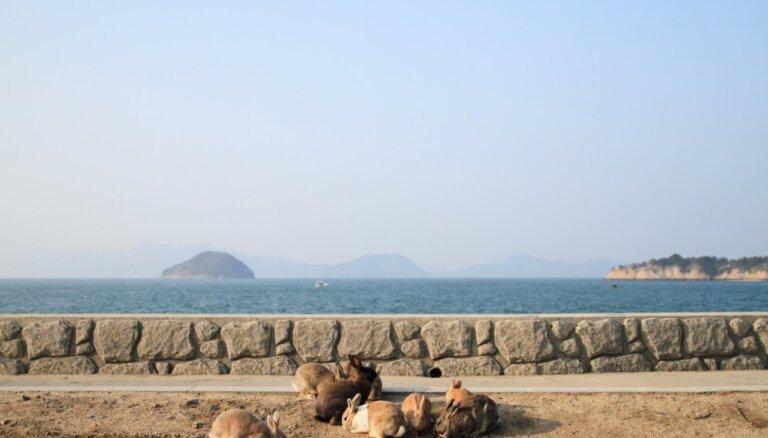 Pie Japānas ziemeļaustrumu piekrastes notikusi 7,2 magnitūdu zemestrīce