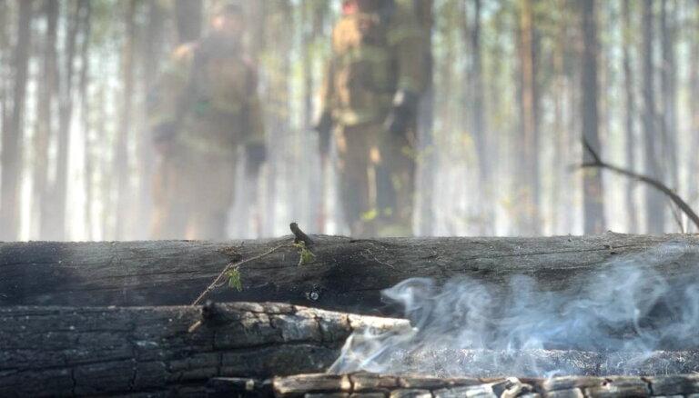 Sibīrija klimata pārmaiņu dēļ šovasar uzkarst īpaši strauji