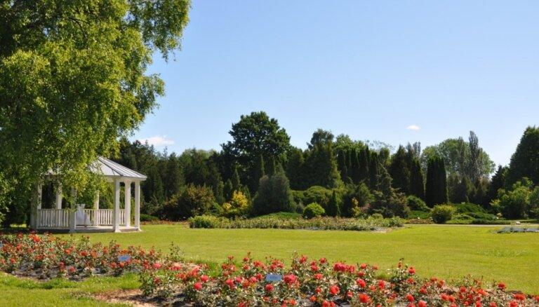 15.jūlijā Nacionālais botāniskais dārzs Salaspilī aicina visus uz šī gada skaistāko stādu tirdziņu - 'Rožu dienu'