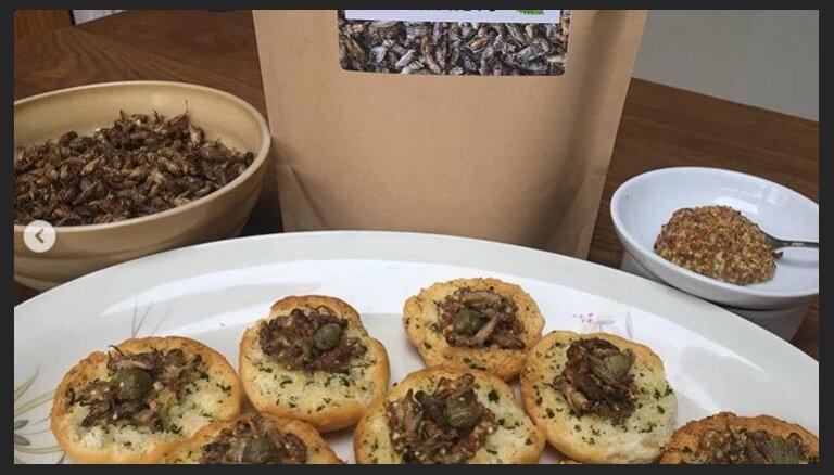ФОТО. Британская ферма запускает в производство бургеры с мучными червями