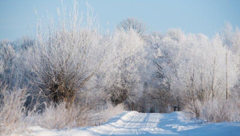 В субботу в Латвии - пасмурно и снег, толщина снежного покрова - до 27 см