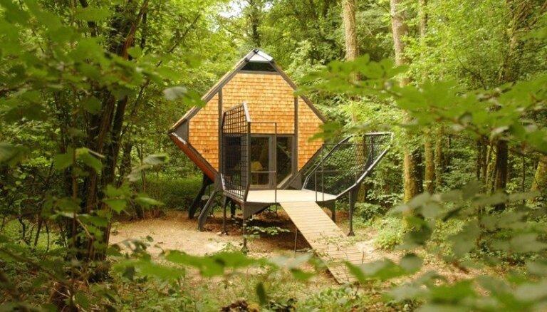 Prom no pilsētas dzīves: seši stāsti par omulīgām meža mājiņām