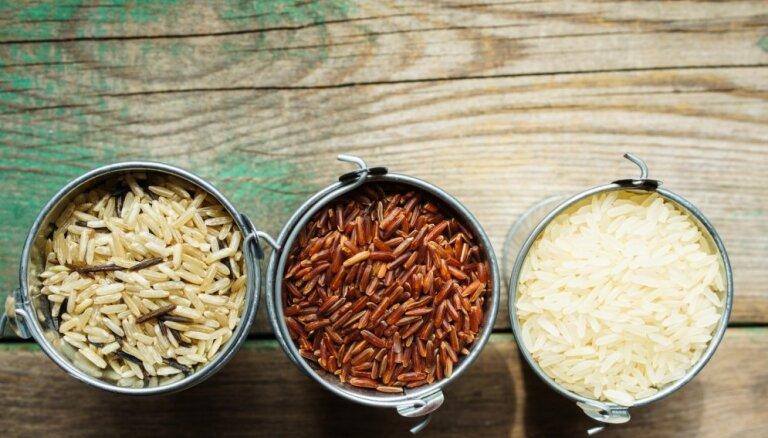 Азбука кухни. Все о рисе: как различать сорта и что из них готовить